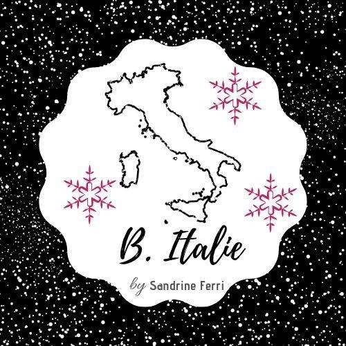 Logo N_B v2 Noël
